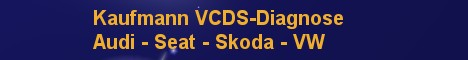 VCDS Fahrzeugdiagnose